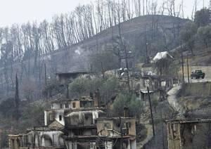 """""""Οι πυρόπληκτες ορεινές περιοχές, οι περισσότερο παραγωγικές, έχουν εγκαταλειφθεί"""""""